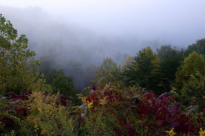 Misty Sunrise - Great Smoky Mountain National Park