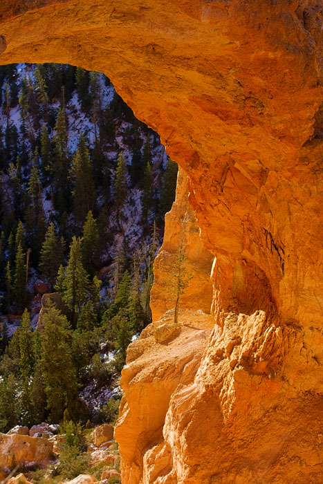 Natural Bridge - Bryce Canyon
