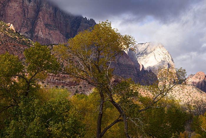 Zion Valley II